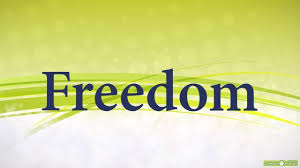 freedom android freedom v1 0 6 eu sou android