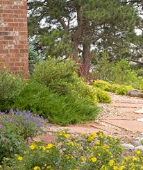 texas landscaping ideas side yard next to air conditioner and guest room the rock