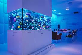 Wall Aquarium by Fish Wall Mounted Aquarium Aquarium Design Ideas