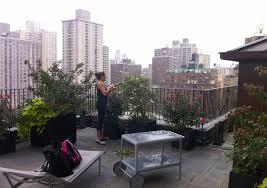 Urban Gardens Phoenix - our approach eco friendly urban gardening all decked out