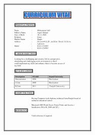 personal resume exles sle resume profile unique personal profile in resume exle