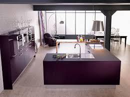cuisines americaines cuisine moderne violette avec îlot modèle rive droite