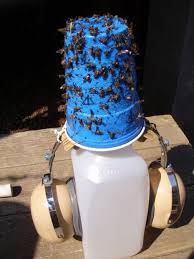 How To Get Rid Of Flies In The Backyard by Deer Fly Traps 8 Steps With Pictures