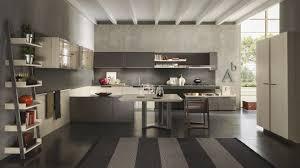 Kitchen Cabinets European Style Kitchen Simple Marvelous Pedini Eko Best European Style Kitchen