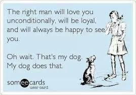 Crazy Dog Lady Meme - i d rather be known as the crazy dog lady than a people person
