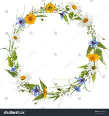 Summer Flowers by Circle Frame Colorful Summer Flowers Without Stock Illustration
