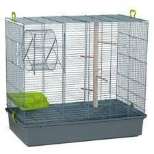 gabbie scoiattoli gabbia per scoiattoli gabbia 2 livelli ruota scaletta