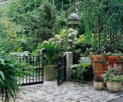 low maintenance perennials for the northeast