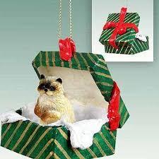 ragdoll cat gift box ornament delightful
