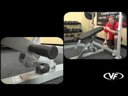 Weider Pro 256 Combo Weight Bench Olympic Combo Bench Youtube