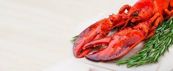 seafood restaurant lobster dishes soups brunswick me