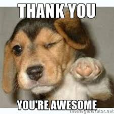 You Are Awesome Meme - collection of funniest thank you meme for you