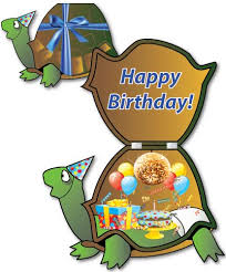 giant turtle birthday card huge turtle birthday card free shipping