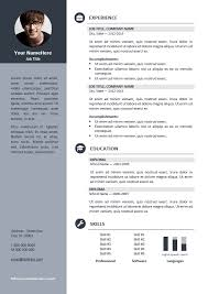 Resume Templates For Experienced It Professionals Free Professional Resume Template Resume Template And