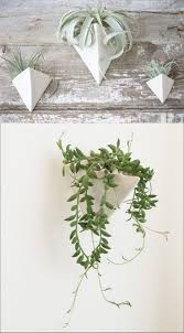 Modern Hanging Planter by Best 25 Wall Mounted Planters Ideas On Pinterest Small Kitchen