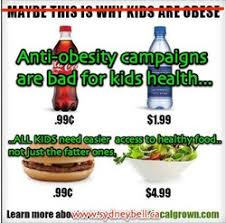 Healthy Food Meme - why anti obesity messages are doing more harm than good