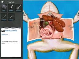 virtual frog dissection punflay ipad curriculum