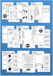 pupil resources stone age to iron age pack http ks2history2 wix
