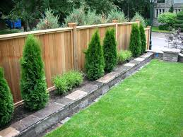 backyard ideas for dogs backyard ideas for dogs abhitricks com