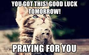 Good Luck Cat Meme - luck tomorrow praying for cat rhmemegeneratornet ust cbasc on