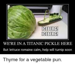Vegetable Meme - 25 best memes about vegetable pun vegetable pun memes