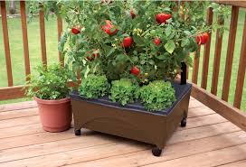 Planters On Wheels by Starting A New Garden Archives Kristi Trimmer