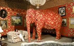 elephant in the living room elephant in the living room tv tropes