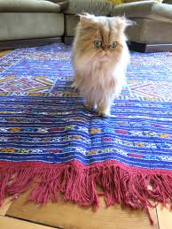 how to choose a rug for a cat friendly home meow lifestyle
