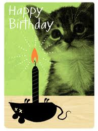 funny birthday cards justwink cards