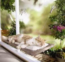 kitty window seat wall shelving for cats cat window perch diy cat