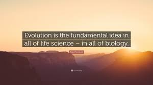 Comfort Quote Ray Comfort Quote U201cevolution Is The Fundamental Idea In All Of