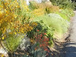 53 best waterwise gardening images on garden