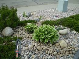 Small Shrubs For Front Yard - landscape function selecting shrubs for minnesota yard and garden