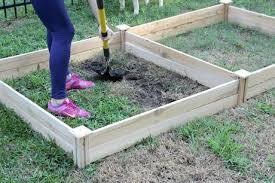 raised bed vegetable garden paperblog