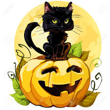 halloween pumpkin black background 26629148 a cute black cat on a halloween pumpkin eps8 isolated on