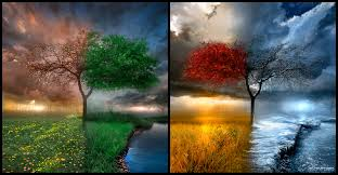 seasonscape by alexiuss customization wallpaper abstract from