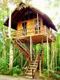 Treehouse Fostering Agency - pinterest