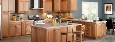 Kitchen Cabinet Installation Cost Home Depot by Hampton Bay Cabinets U0026 Kitchen Cabinetry
