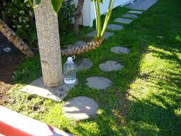 Keep Cats In Backyard How To Keep Dogs U0026 Cats From Pooping On Your Yard 4 Steps