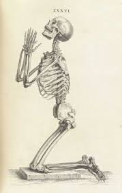 skeleton sketch i don u0027t know why this image do recalls me the