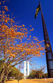 Condor Flags Charlotte Nc 82 Best Places I Have Been Images On Pinterest Paisajes Army