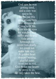 loss of dog designed to promote healing provide comfort our site includes a