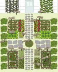 companion planting vegetable garden layout farm u0026 garden