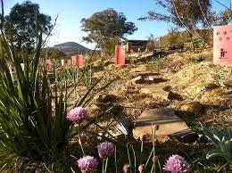 Botanical Garden Internship Announcing Our Forest Garden Silviculture Internships Milkwood
