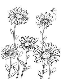 free daisy coloring