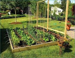 Garden Setup Ideas Pretty Backyard Garden Setup A Decorifusta Gardening Design