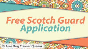 clean 6 dining room chairs and get free scotch guard application