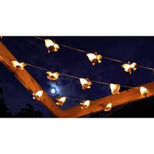 Outdoor Lantern String Lights by String Lights Shop For String Lights On Polyvore