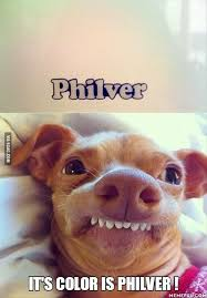 Dog Teeth Meme - 170 best funny dogs images on pinterest funny animal pics funny