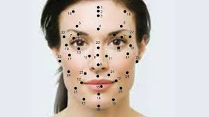Chinese Face Mapping Meaning Of The Moles On Your Face Mole And Body Mole
